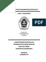 Sigit Laporan Praktikum Makropaleontologi