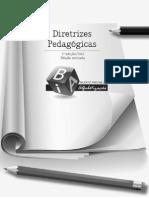 Diretrizes Pedagógicas Do BIA - SEEDF 2012