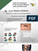Dengue y Paludismo......