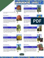 Trees Catalog