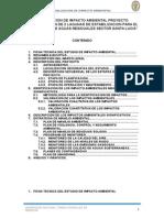 DECLARACION DE IMPACTO AMBIENTAL PROYECTO.docx
