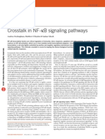 Crosstalk in NF-κB Signaling Pathways