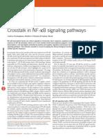 Crosstalk in NF-κB Signaling Pathways