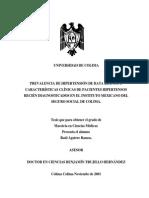 HIPERTENSIONN.pdf