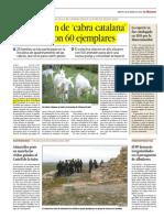 cabra catalana.pdf