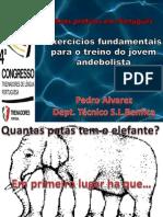 Exerccios Fundamentais Para o Treino Do Jovem Andebolista Pedro Alvarez