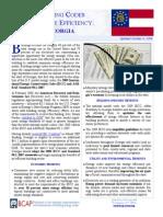 Georgia Fact Sheet