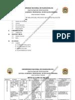Final Plan de Mejora 2010 -2