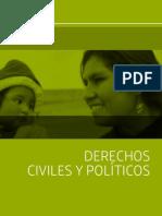 Derechos Civiles y Politicos 2014 15
