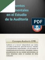 Elementos Fundamentales de La Auditoría