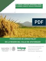 Producción de Arroz Palay en La Región Del Valle de Apatzingán