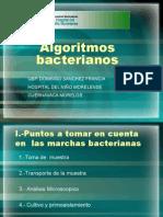 Algoritmos Bacterianos.ppt