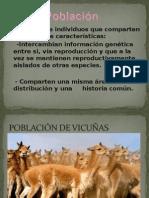POBLACIÓN  II.ppt
