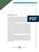 6,. Alfabetizacion Inicial (Programa BA- 2011)