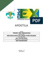 Metodologia Da Lingua Portuguesa