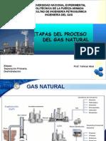 presentacion-de-ing-del-gas dessh..ppt