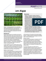 Postpn 384 Biofuels From Algae