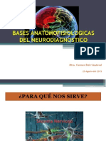 Bases Anatomofisiologicas Del Neurodiagnostico