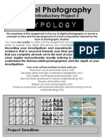 as introductory brief typology project 3