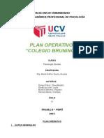 Plan Operativo Bruning