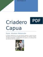 Criadero Di Capua-Kali
