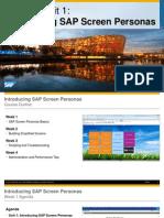 OpenSAP Sps1 Week 1 Unit 1 IPSP Presentation