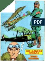 E2-013 - Los Gansos Negros