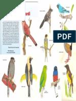 07 - O Pintor de Aves - Vitor Torga Lombardi