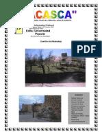 ACASCA 14.pdf
