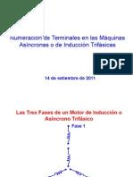 67111288-Numeracion-de-Terminales-en-las-Maquinas-Asincronas-o-de-Induccion-Trifasicas.ppt
