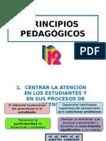 Principios Pedagógicos Pres