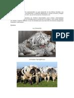 Biotecnología Animal y Vegetal
