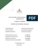 Atps - Noções de Atividades Atuariais-Formatada