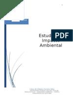 Estudos de Impacto Ambiental