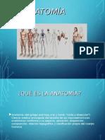 Anatomía Clase 1.ppt