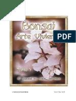 Bonsai Arte Viviente V