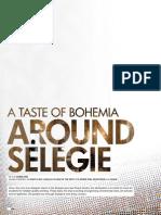 A taste of Bohemia - Around Selegie