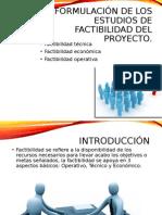 1.4 Formulación de los estudios de factibilidad del proyecto
