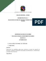Informe selección de un panel.docx