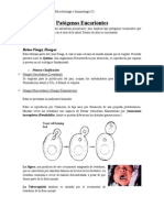 6. Patógenos Eucariontes
