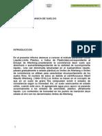 Plasticidad Full Informacion 100
