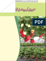 Strawberry Leaflet (Iqbalkalmati.blogspot.com)