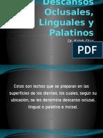 Clase 5 Apoyos y Descansos Oclusales Linguales y Palatinos