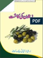 Zaitoon k K (Iqbalkalmati.blogspot.com)