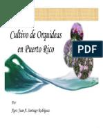 Cultivo de Orquideas en Puerto Rico