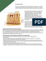 Endodontik (Perawatan Saluran Akar)