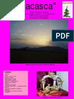 COMBINADO.pdf