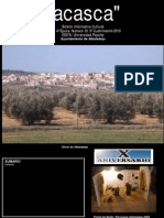 ACASCA 2010.3.pdf