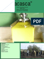 ACASCA 2012 abril.pdf