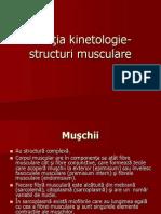 kinetologie 4